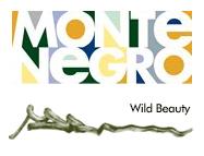 Montenegro tourism logo