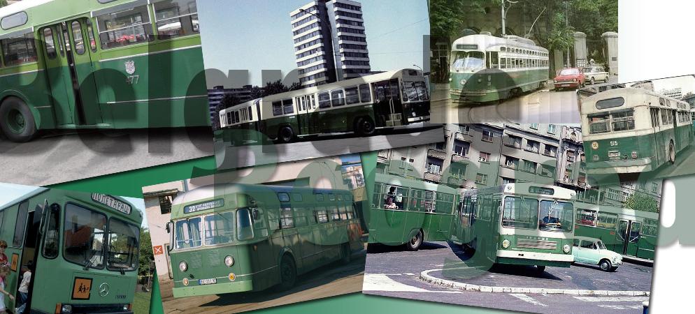 zeleni-autobusi-beograd