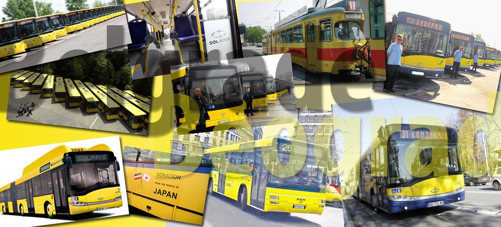 zuti-autobusi-beograd